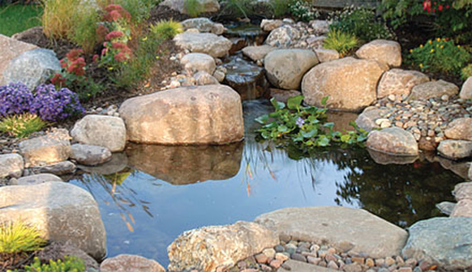 Pond Maintenance Contractor